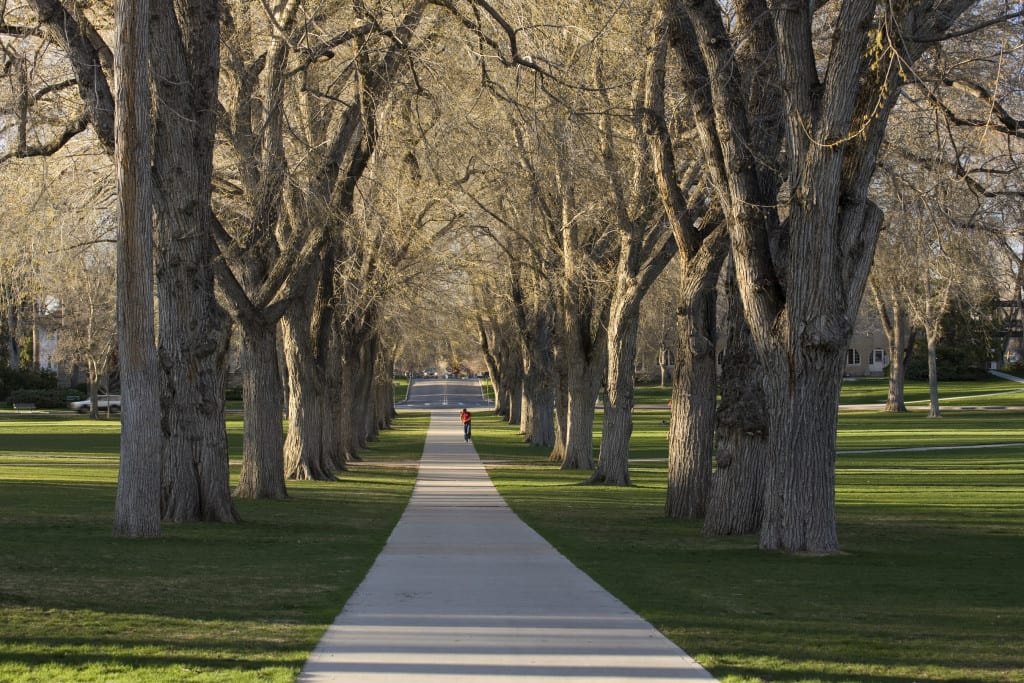 Colorado State University Oval Fort Collins